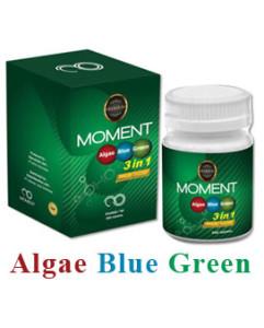 abg moment - algae blue green