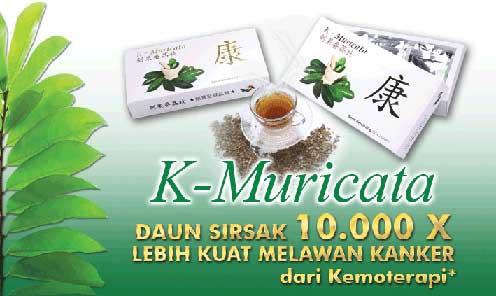 muricataasli,muricata original, k muricata, k-muricata, harga muricata, jual muricata