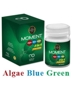 abg moment - algae blue green